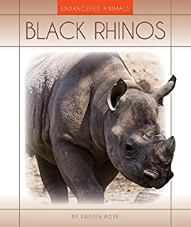 Black Rhinos (Endangered Animals)