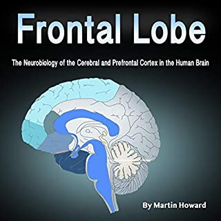 Frontal Lobe cover art