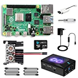 LABISTS Raspberry Pi 4 Model B 8GB RAM Starter Kit, RPi Barebone con MicroSD 64GB, Tipo C...
