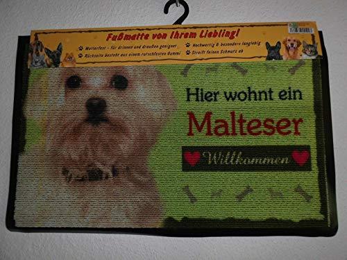 Pfronten Fußmatte Malteser (35), Fußabtreter, Türvorleger, Türmatte wetterfest, Hund
