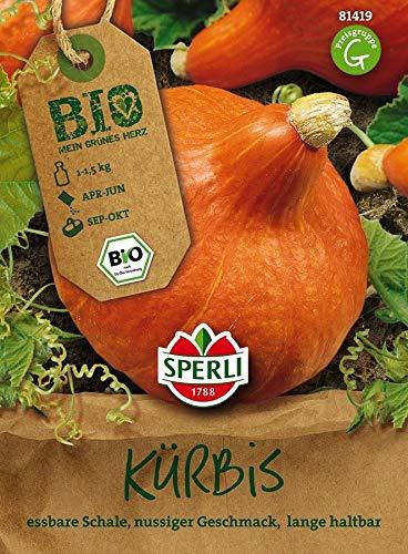 Sperli Hokkaido-Kürbis Solor - Bio-Saatgut | Nussiger Geschmack | 1 Packung Samen