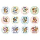 BLOUR 12 unids/Set bebé Mujeres Embarazadas Pegatina de fotografía mensual Divertido Mes hito Pegatinas DIY Chico Souvenirs Prop