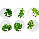 Amatable 37-1K-018 Assiettes plates rondes Les petites salades Coffret de 6 assorties Porcelaine Blanc et vert D25cm