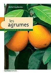 Les agrumes de Michel Courboulex