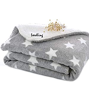 LeerKing Dog Puppy Blanket Double Layer Micro Fleece Plush Pet Cat Warm Bed Cover Cushion Mat, 30 x 40 Inches, Grey, M