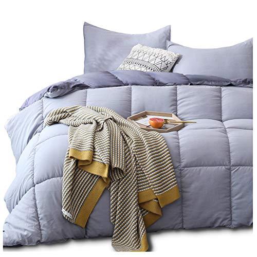 KASENTEX All Season Down Alternative Quilted Comforter Set Reversible Ultra Soft Duvet Insert Hypoallergenic Machine Washable, Queen, Quartz Silver/Pebble Grey