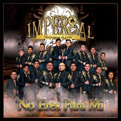 Banda Imperial de Huajuapan de León