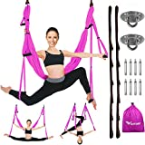 Vivitory Aerial Yoga Swing Set - Yoga Hammock/Sling Kit - Strong & Durable Antigravity Inversion Kit with Trapeze Sling – Ideal for Home & Gym Fitness (Purple)