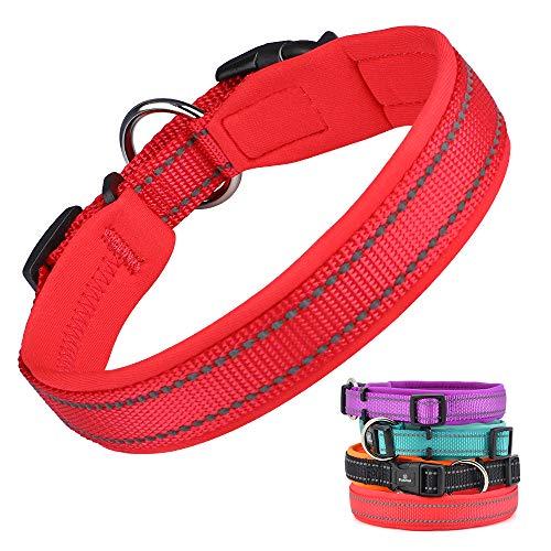 Pumila Einstellbare Hundehalsband Nylon Reflektierend Neopren Gepolstert Verstellbar Halsband Große Kleine Hundehalsbänder Leichtes Welpenhalsband mit Hundelicht zum Laufen/Gehen/Training-Rot-S