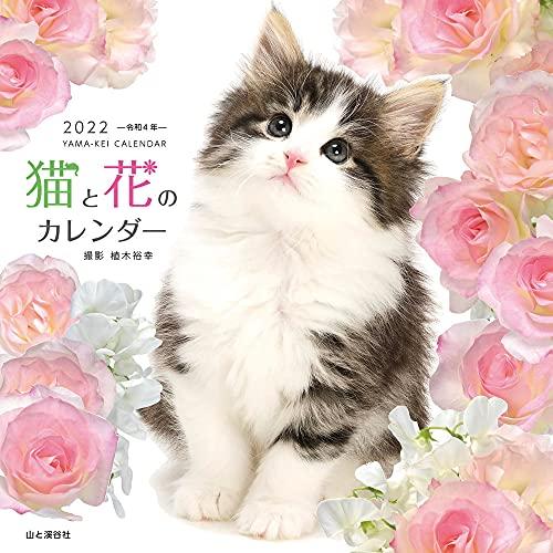 【Amazon.co.jp 限定】カレンダー2022 猫と花のカレンダー (月めくり・壁掛け)【特典データ:スマホ壁紙画像】 (ヤマケイカレンダー2022)