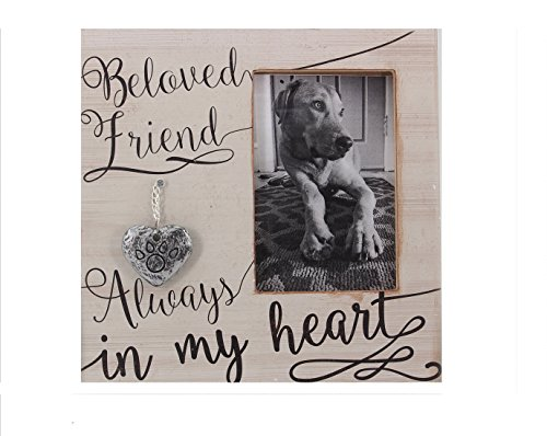 Young's 9' x 0.5' x 9' Wood 4' x 6' Pet Memorial Picture Frame