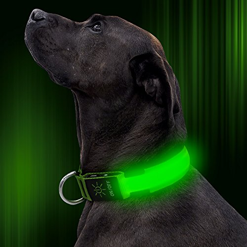 Illumifun LED Dog Collar, USB Rechargeable Glowing Safety Collar, Nylon Adjustable Light Up Collar Make Your Dog Be Visible& Safe in The Dark(Green, Medium)