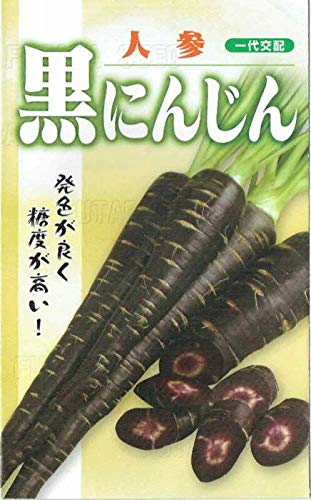 フタバ種苗 黒にんじん コート種子