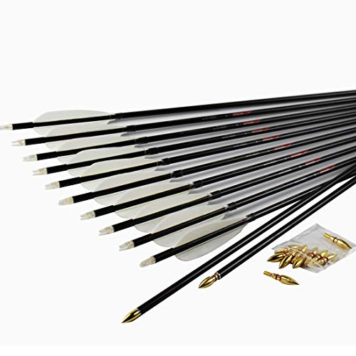 Linkboy Archery Carbon Arrow Hunting Practice Target Arrow with Removable Tip for Compound Recurve Bows, Spine 400,28inch Pack of 12PCS