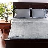 Berkshire Blanket VelvetLoft Sheet Set | Super Soft, Cozy Plush Sheets | Cool Grey | Queen (96' x 100')