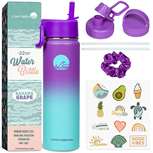 Canteenies Stainless Steel Water Bottle - Insulated Water Bottles with Straw for Hot and Cold Beverages -Includes Stickers and Scrunchies - BPA-Free Reusable Water Bottle - Bahama Grape (22 Oz)