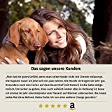 AniForte Wurm-Formel 50 Kapseln- Naturprodukt für Hunde - 5