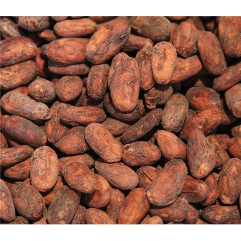 CLUBDELCHOCOLATE - Feves non torrefiee de cacao