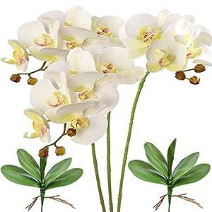 FagusHome 28 Pulgadas Flores Artificiales de Phalaenopsis 3 Piezas con 2 Paquetes Hojas Flores de orquídeas Artificiales…