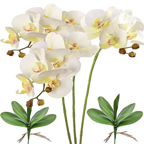 FagusHome 28 Pulgadas Flores Artificiales de Phalaenopsis 3 Piezas con 2 Paquetes Hojas Flores de orquídeas Artificiales Plantas de Tallo para decoración del hogar (Blanco)