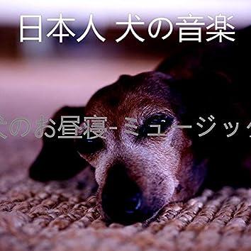 犬のお昼寝-ミュージック