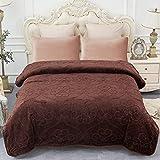 JML Plush Fleece Blanket, Bed Blanket Queen Size (79' x 91') - Soft, Warm, Lightweight Solid Color Embossed Blanket for Bed, Pattern-Coffee