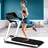 Ylight Foldable Treadmill Electric Motorized Treadmill Motorized with LED Display and Tablet Holder, for Home Fitness Equipment