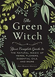 the green witch book cover