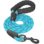 iYoShop 6 FT Strong Dog Leash with Comfortable Padded Handle and Highly Reflective Threads Dog Leashes for Small Medium and Large Dogs (Medium/Large, 6FT, Blue)
