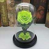 ローズギフト、彼女の美女と野獣永遠のバラの愛と美しさ生花ガラスドームバレンティンのギフト造花とギフトボックスゴールドとエド(色:緑)