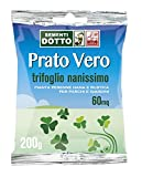 Sdd 40030420 Prato Trifoglio Nanissimo, Verde, 12x20x2 cm...