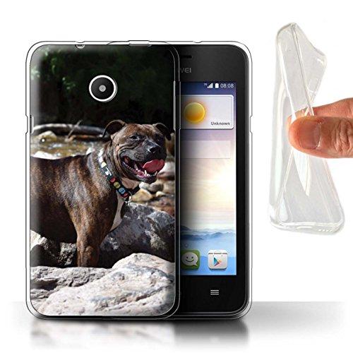 Hülle Für Huawei Ascend Y330 H&/Eckzahn Rassen Staffordshire Bull Terrier Design Transparent Dünn Weich Silikon Gel/TPU Schutz Handyhülle Hülle