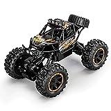 DFERGX 1:14 Monster Climbing Car RC Car 2.4g 25km / H 45 ° 4WD Todo Terreno Buggy Coche De Deriva De Alta Velocidad Coche De Juguete Regalo De Cumpleaños Regalos para Adultos Y Niños