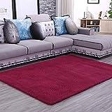 Thesaurus Alfombra de la Sala Felpudos Thicken Lambskin Nylon Velvet Living Room Coffee Table Bedroom Carpet Floor Mat, Wine Red_40*60cm