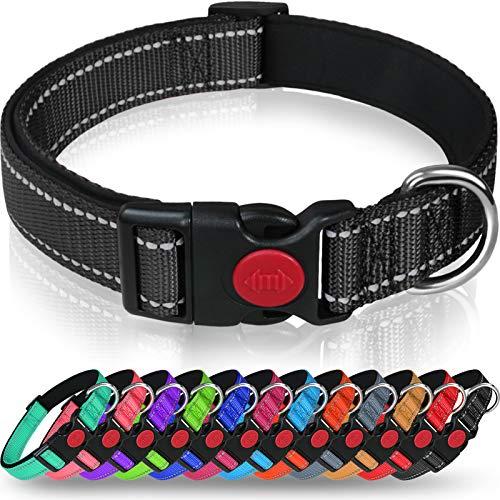 Taglory -   Hundehalsband,