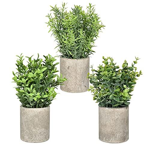 YQing 3 Stück Künstlich Topfpflanze Deko, Eukalyptus Blätter Topfpflanze Künstliche Pflanze im Topf Set für Zuhause Büro Schreibtisch Raumdekoration