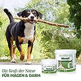 AniForte Wurm-Formel 20 g- Naturprodukt für Hunde - 2