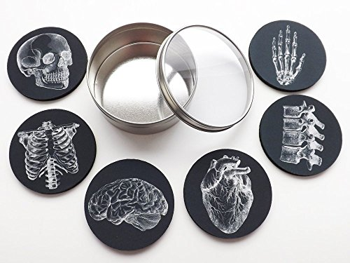 Anatomy Goth Gift Set 6 Drink Coasters 3.5 inch Skull Anatomical Heart Male Nurse Practitioner Doctor Physician Assistant