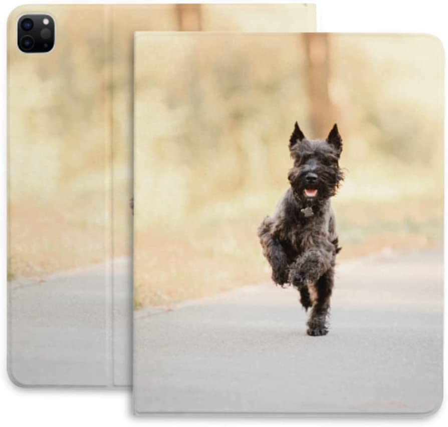 Case for Ipad Pro 12.9 Miniature Pa Running San Diego Mall Dog Schnauzer Autumn Year-end annual account
