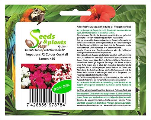 Stk - 100x Impatiens F2 Colour Cocktail- Fleißiges Lieschen Samen Blumen K39 - Seeds Plants Shop Samenbank Pfullingen Patrik Ipsa