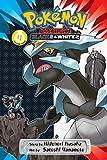 Pokemon Adventures: Black 2 & White 2, Vol. 4
