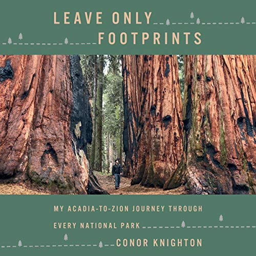 Leave Only Footprints audiobook cover art