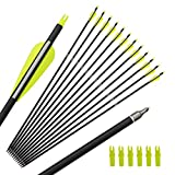 ANTSIR 30 Inch Carbon Arrow Practice Hunting Arrows with Removable Tips for Compound and Recurve Bow(Pack of 12)