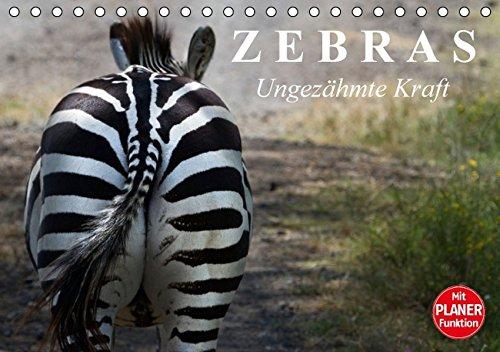 Zebras - Ungezähmte Kraft (Tischkalender 2016 DIN A5 quer): Die gestreiften Wildpferde Afrikas (Geburtstagskalender, 14 Seiten) (CALVENDO Tiere)
