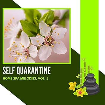 Self Quarantine - Home Spa Melodies, Vol. 5