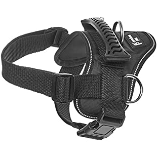 Precious Pet Heavy Duty Dog Harness with Handle, No Pull No Choke, Padded, Waterproof, with Adjustable Straps & Quick Release Buckle, Black (Medium):Maskedking