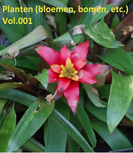 Planten (bloemen, bomen, etc.) Vol.001