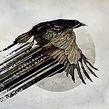 Katatonia: Mnemosynean (Audio CD (Compilation))