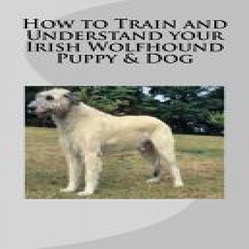 How to Train and Understand your Irish Wolfhound Puppy & Dog cover art