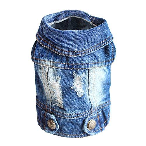 SILD - Chaqueta Vaquera con Capucha para Perros medianos y pequeños, diseño Vintage Desgastado, Color Azul (S)